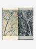 Winter Trees - A Pictorial Study, Morris Cox, 1977, Crafts Council Collections: B19. Photo: Stokes Photo Ltd.